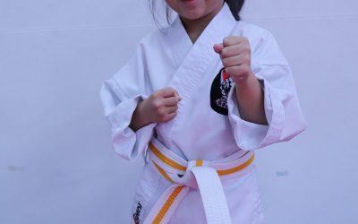 Karate's Ritual of Courtesy